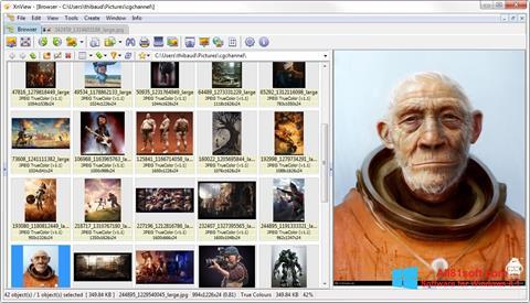 સ્ક્રીનશૉટ XnView Windows 8.1