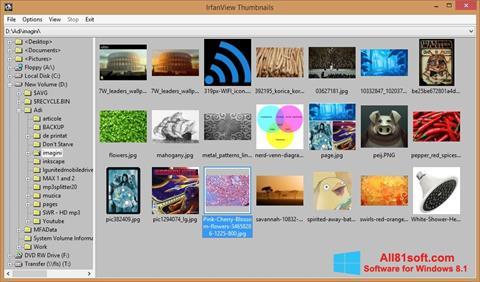સ્ક્રીનશૉટ IrfanView Windows 8.1
